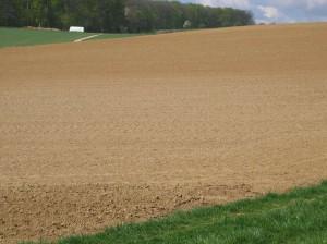 Распаханное поле, Вюртемберг